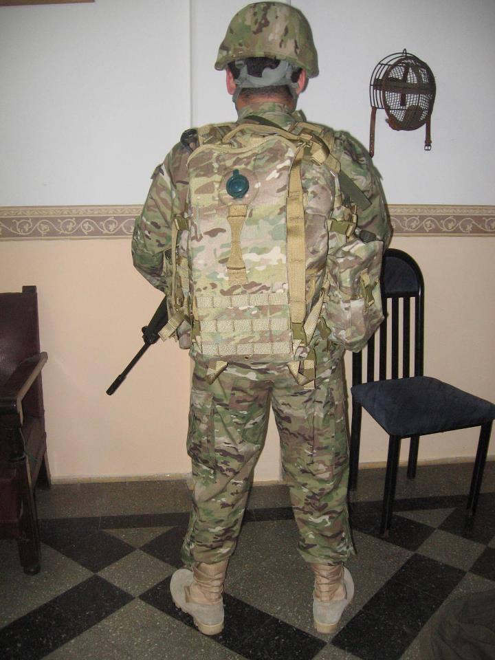 Armée argentine/Fuerzas Armadas de la Republica Argentina - Page 11 1299