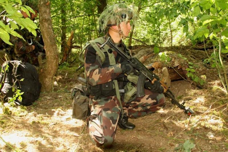 Armée Hongroise/Hungarian Home Defence Force/Magyar Honvédség - Page 2 161