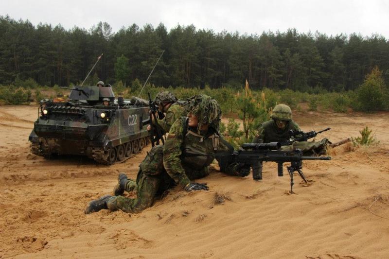 Armée lituanienne/Lithuanian Armed Forces - Page 3 329