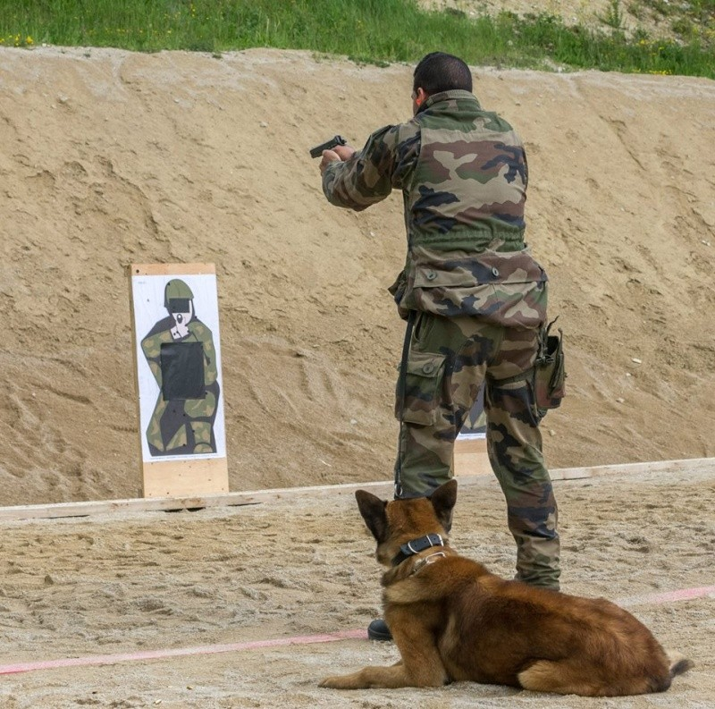 Animaux soldats - Page 5 7143