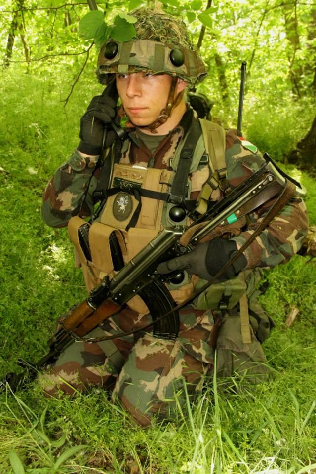 Armée Hongroise/Hungarian Home Defence Force/Magyar Honvédség - Page 2 8108
