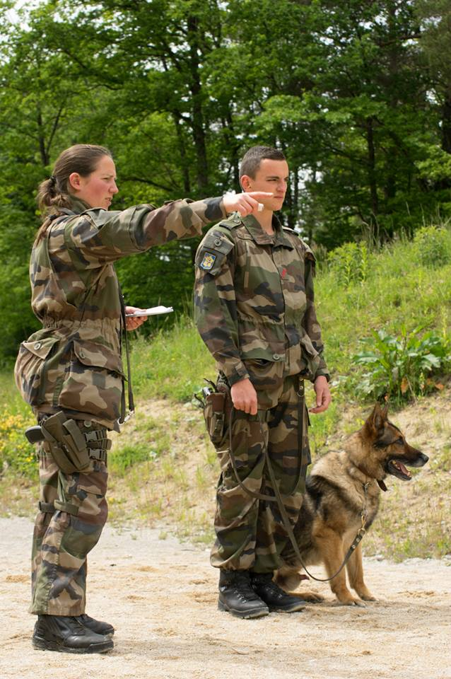 Animaux soldats - Page 5 9110