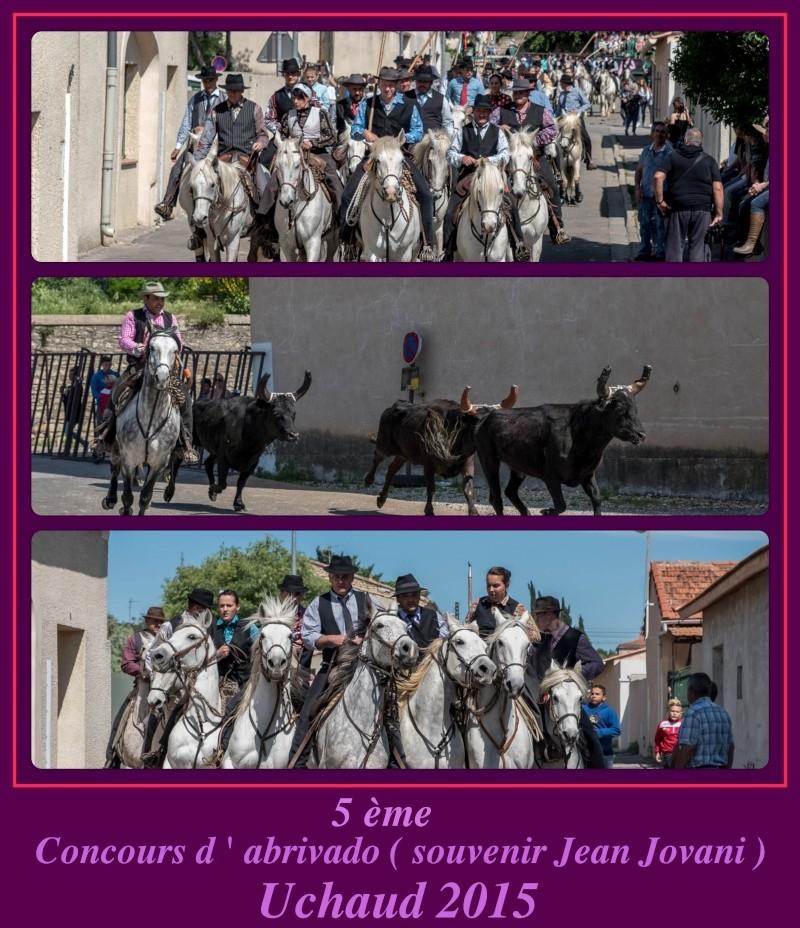 5 ème concours d'abrivado , Uchaud ( 09/05/2015 ) _dsc3813