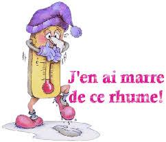 Bonjour, bonsoir, vos humeurs du jour  ;) - Page 39 Rhume10