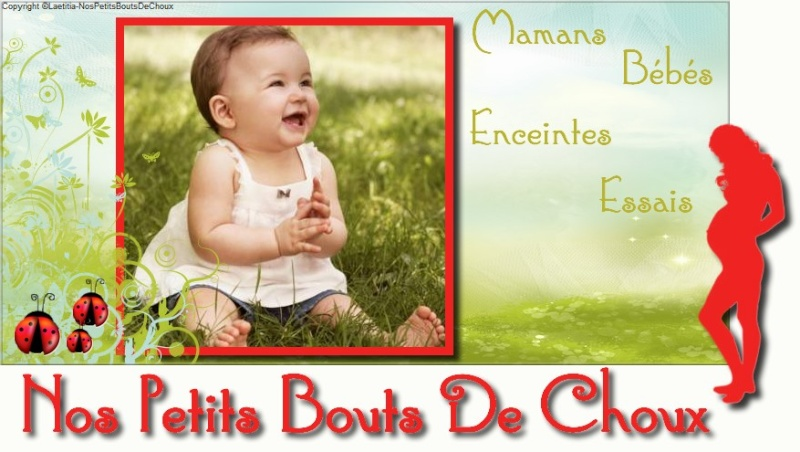 Nos Petits Bouts De Choux Logo_f10