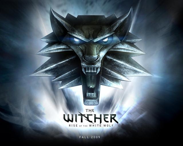 The Witcher. Ou la Saga du Sorceleur. 01801411