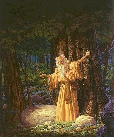 The Witcher. Ou la Saga du Sorceleur. 4a7b4b10