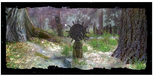 The Witcher. Ou la Saga du Sorceleur. Places13