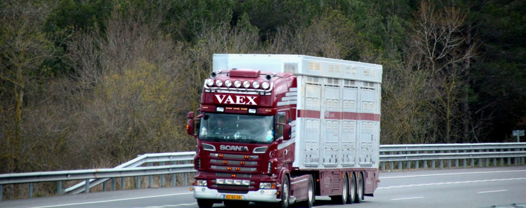 Vaex  (Reek) Img_3635