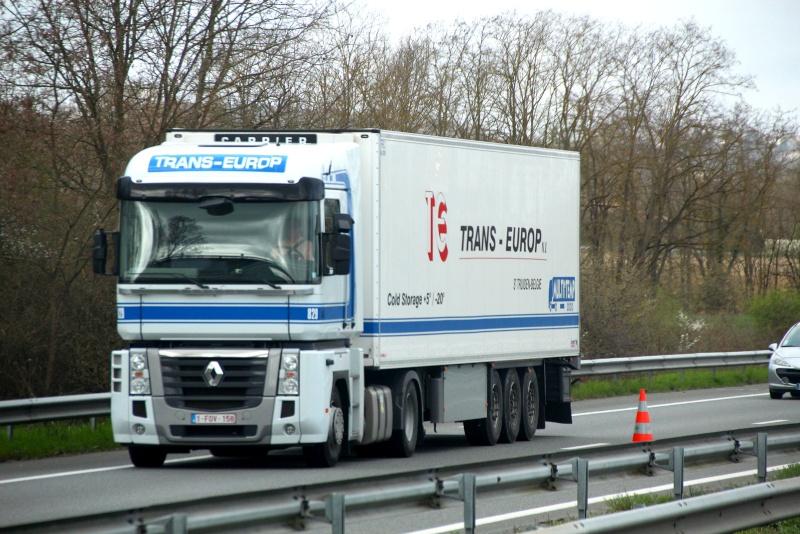 Trans Europ (Sint Truiden)(groupe Vanschoonbeek) - Page 2 Img_3741