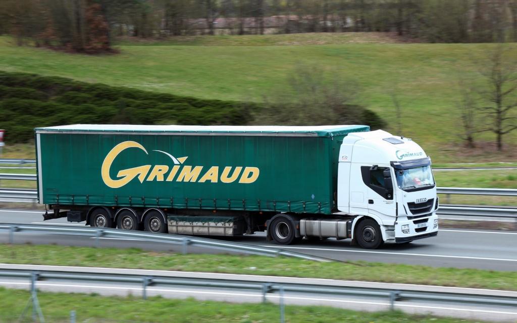 Grimaud (Fontenay le Comte, 85) Img_3839