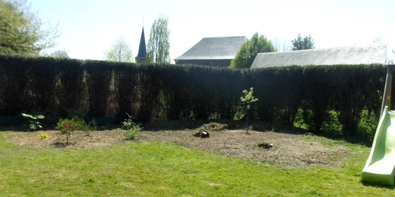 Mon (futur) nouveau jardin 107_3311