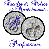 La Galerie d'Armes des Châtelains Belrup10