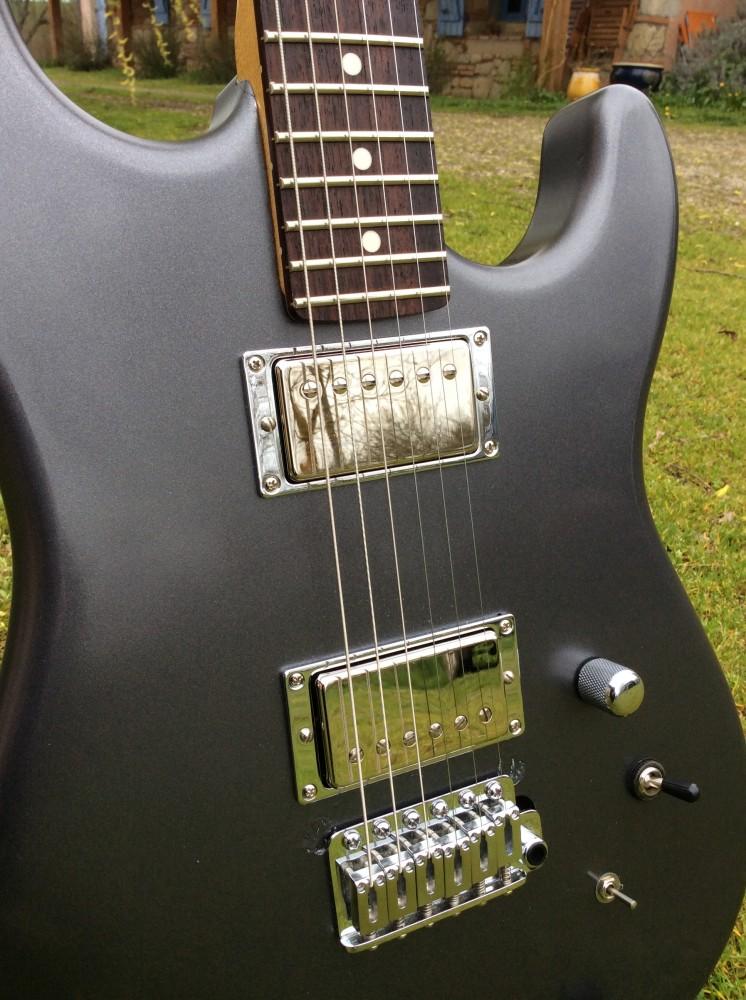 Photos de vos guitares. - Page 39 A110