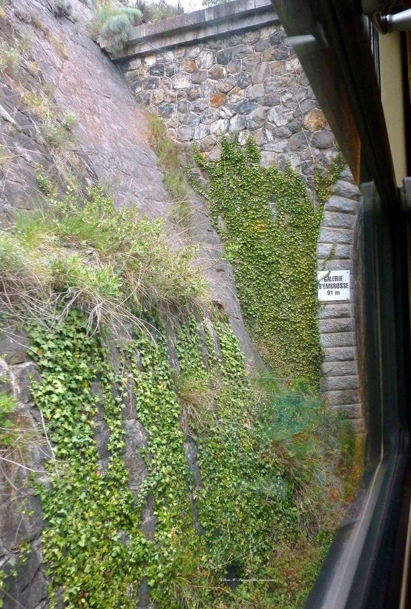 Le Train de l'Aude de l'AP2800 - Page 1 P1070718