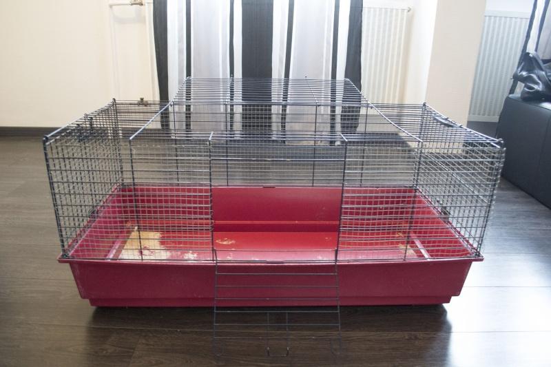 [Vente] Grande cage (convalescence) - 20e 1_111