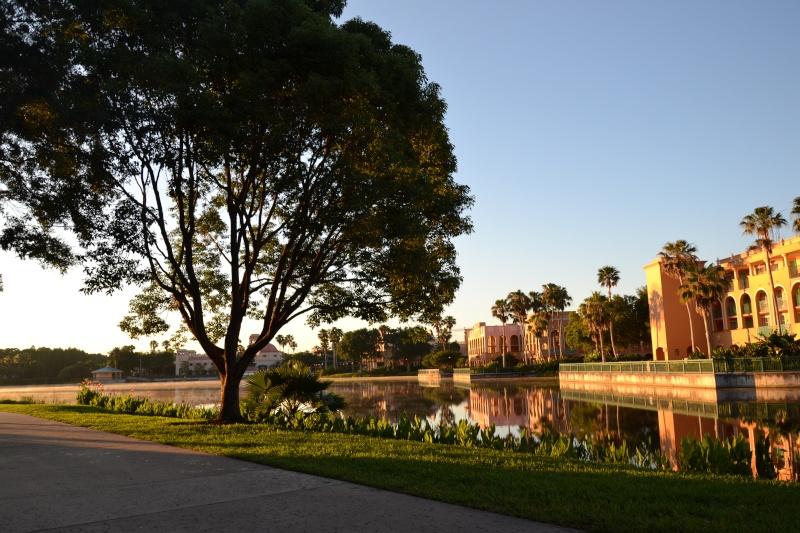 Disneymoon : Walt disney world & Disney cruise line mai 2015  - Page 2 Dsc_0017