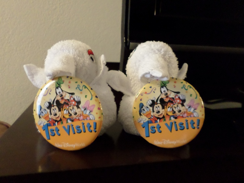 Disneymoon : Walt disney world & Disney cruise line mai 2015  - Page 2 Sam_1013
