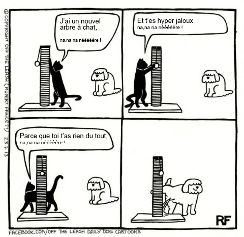 Pensées canines humoristiques Dessin11
