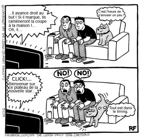 Pensées canines humoristiques Dessin13