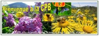 [Public] Les bannières de la CPB - Page 2 Bannie17