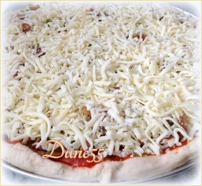 Pizza poulet salsa Ewgx7b10