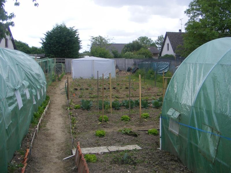 mon jardin Dscf2926