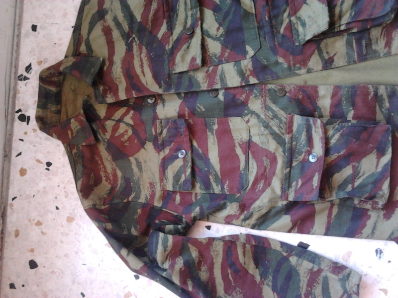 Un peu de camouflage Léopard - Page 6 2015-011