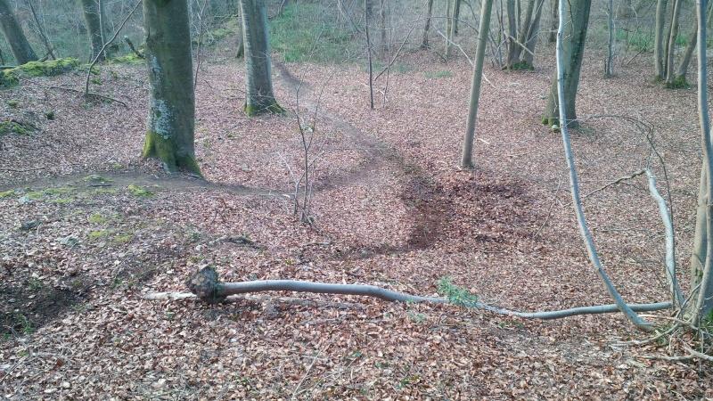 Randuro la Forêt de Hez - 22/03/2015 - Page 2 Img_2010