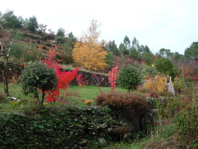 (07) Balade outre Massif Central - Ardèche Dscn4610