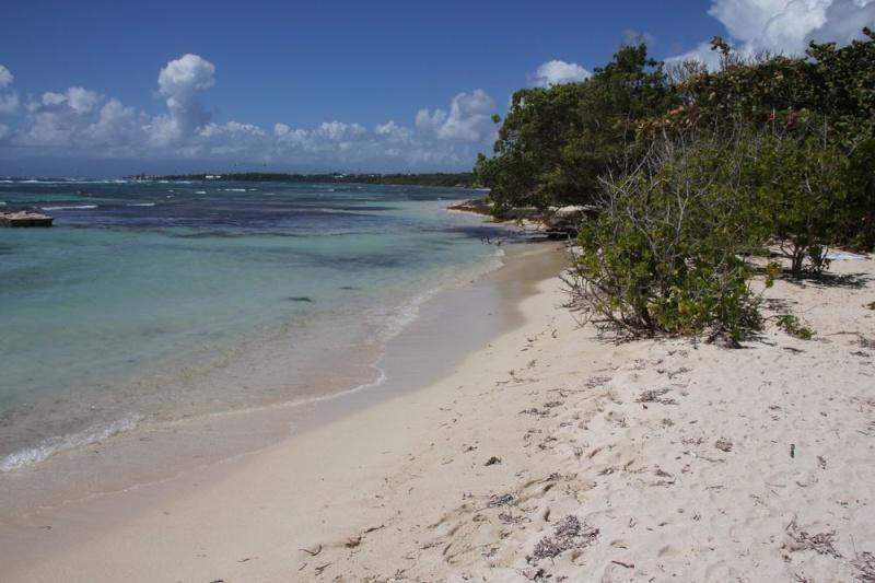 Guadeloupe début mars 109boi10