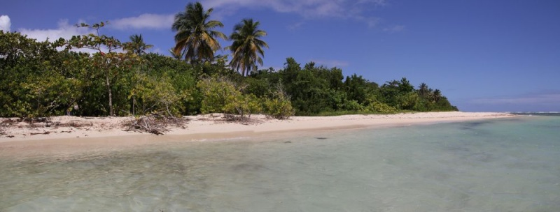 Guadeloupe début mars 110boi10