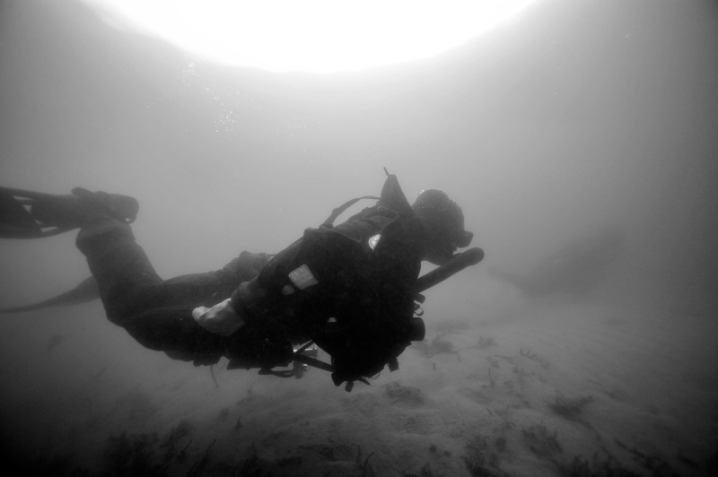 plongée Oxygers ce samedi _dsc6516