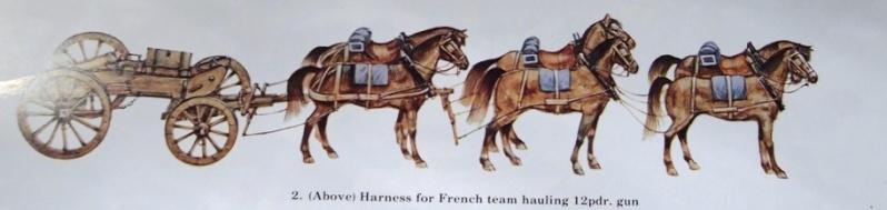 Train d'artillerie Napoléonien P4051013