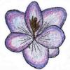 Article Fleur Crocus10