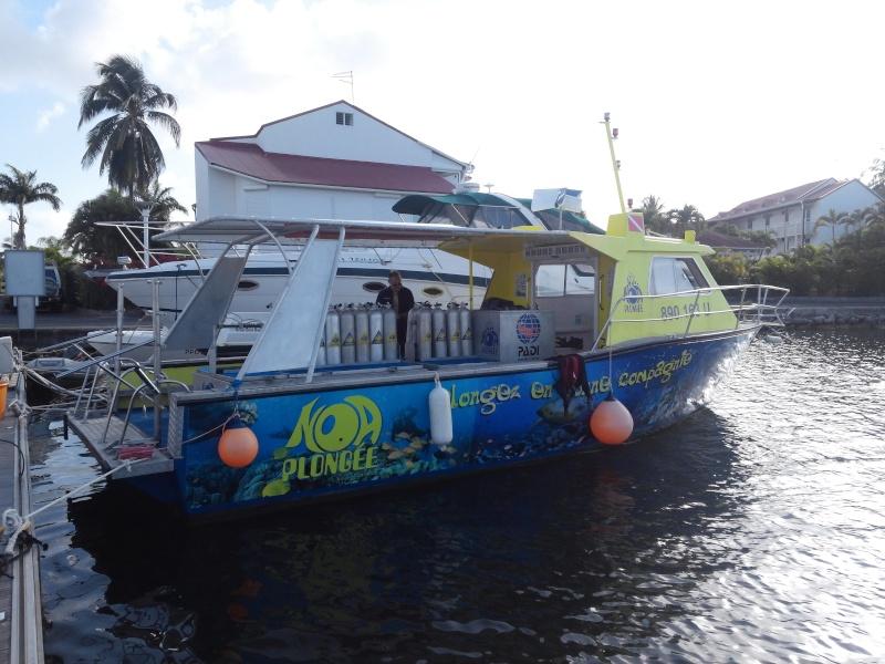 Plongées en Guadeloupe Cam00310
