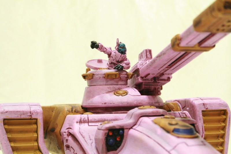 All new Desert Tau - New Spring collection, 20% pinker Img_1417