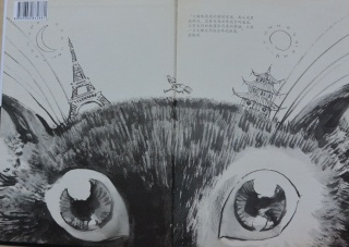 «Regards croisés» 仁智各见 - Editions Beijing Total Vision et Mosquito (Grenoble), sortie mai 2015 Dsc_2011