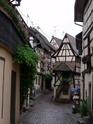 les Vosges-Alscace ascension 2015 Dscf3831