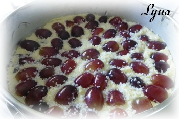 Gâteau Italien à l'huile d'olive et raisins frais Gateau14