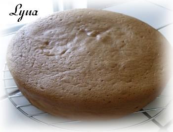 Gâteau éponge au chocolat, mousse caramel et nutella Gyteau10