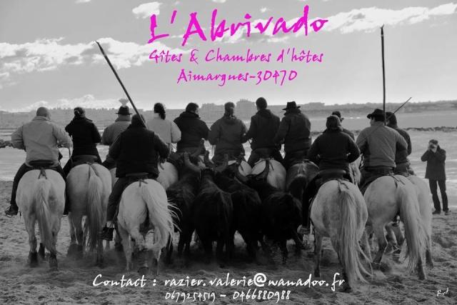 L'Abrivado location en camargue, 30470 Aimargues (Gard) 0020