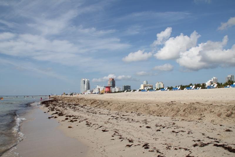 Le merveilleux voyage en Floride de Brenda et Rebecca en Juillet 2014 - Page 18 1117