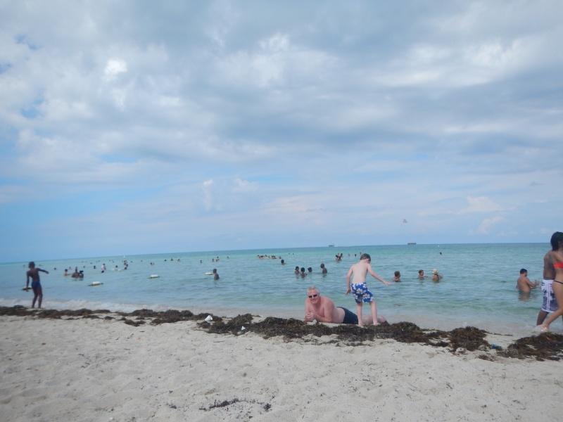 Le merveilleux voyage en Floride de Brenda et Rebecca en Juillet 2014 - Page 18 12110