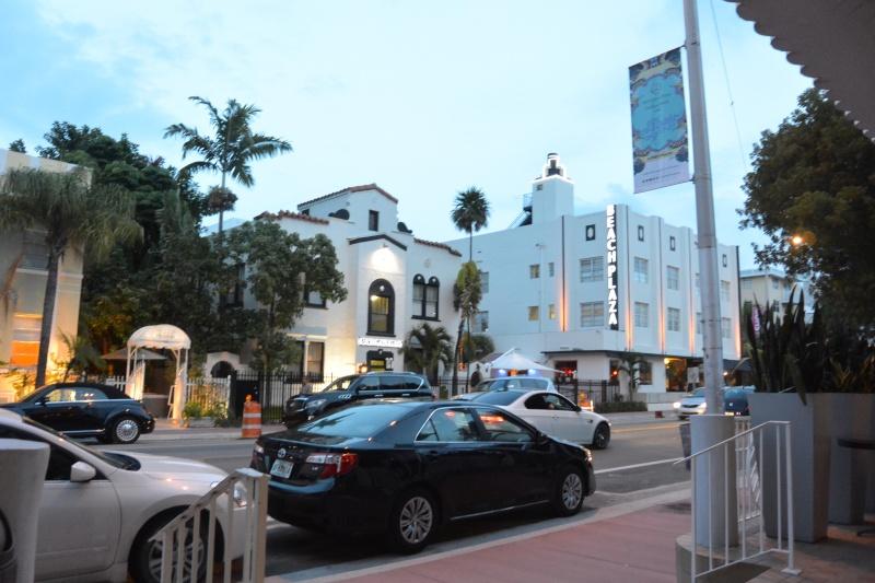 Le merveilleux voyage en Floride de Brenda et Rebecca en Juillet 2014 - Page 18 13310