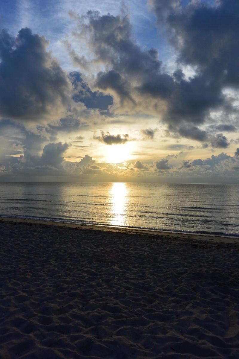 Le merveilleux voyage en Floride de Brenda et Rebecca en Juillet 2014 - Page 16 1411