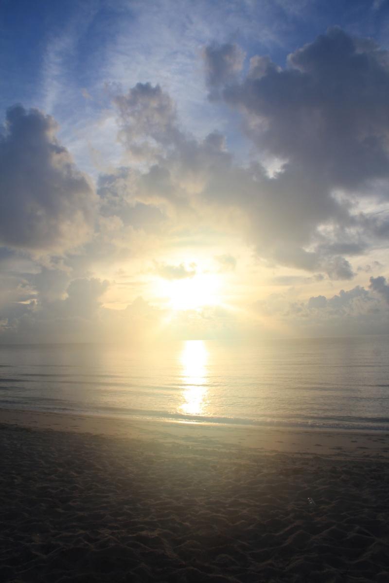 Le merveilleux voyage en Floride de Brenda et Rebecca en Juillet 2014 - Page 16 1511