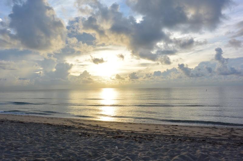 Le merveilleux voyage en Floride de Brenda et Rebecca en Juillet 2014 - Page 16 1611