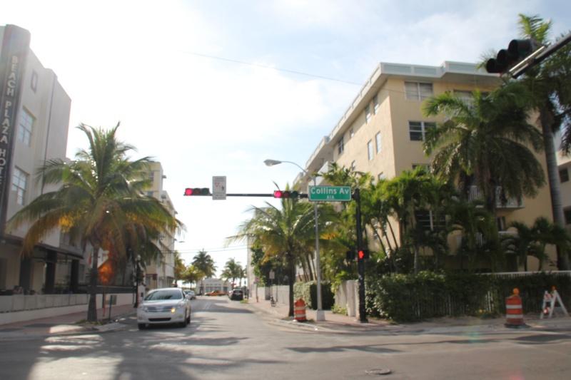 Le merveilleux voyage en Floride de Brenda et Rebecca en Juillet 2014 - Page 18 217