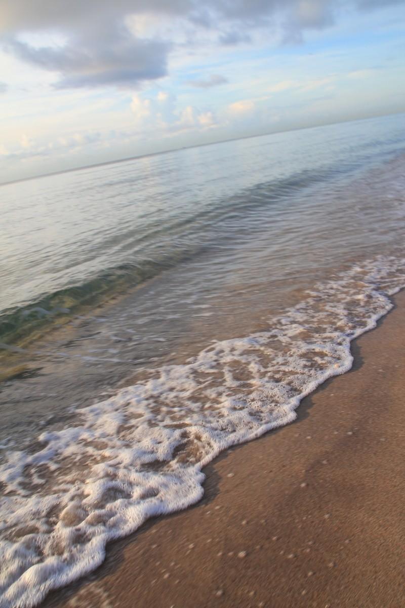 Le merveilleux voyage en Floride de Brenda et Rebecca en Juillet 2014 - Page 16 2411